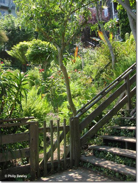 sf_stairways42.jpg
