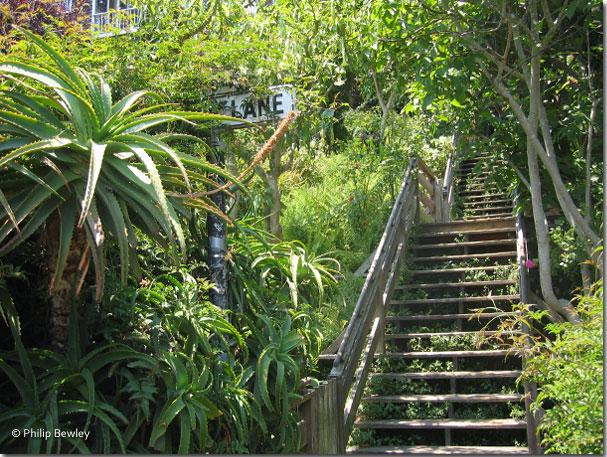 sf_stairways44.jpg